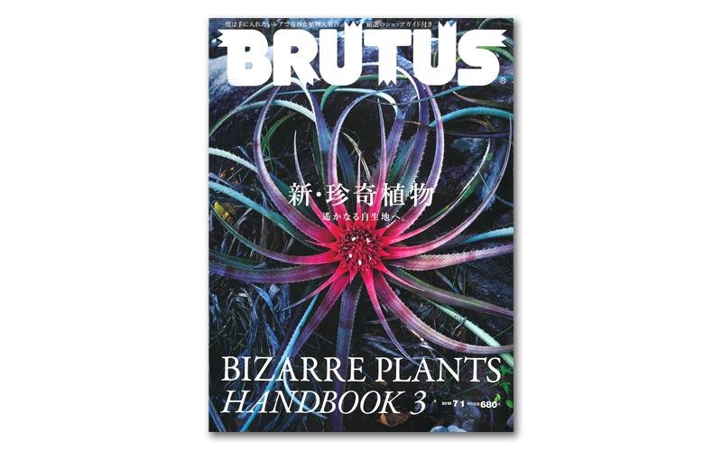 news_img_brutus-872