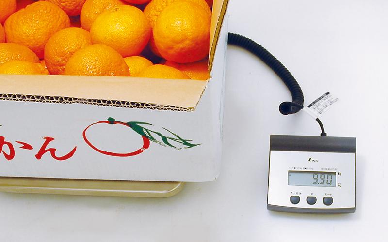 デジタル台はかり  100㎏  隔測式  取引証明以外用
